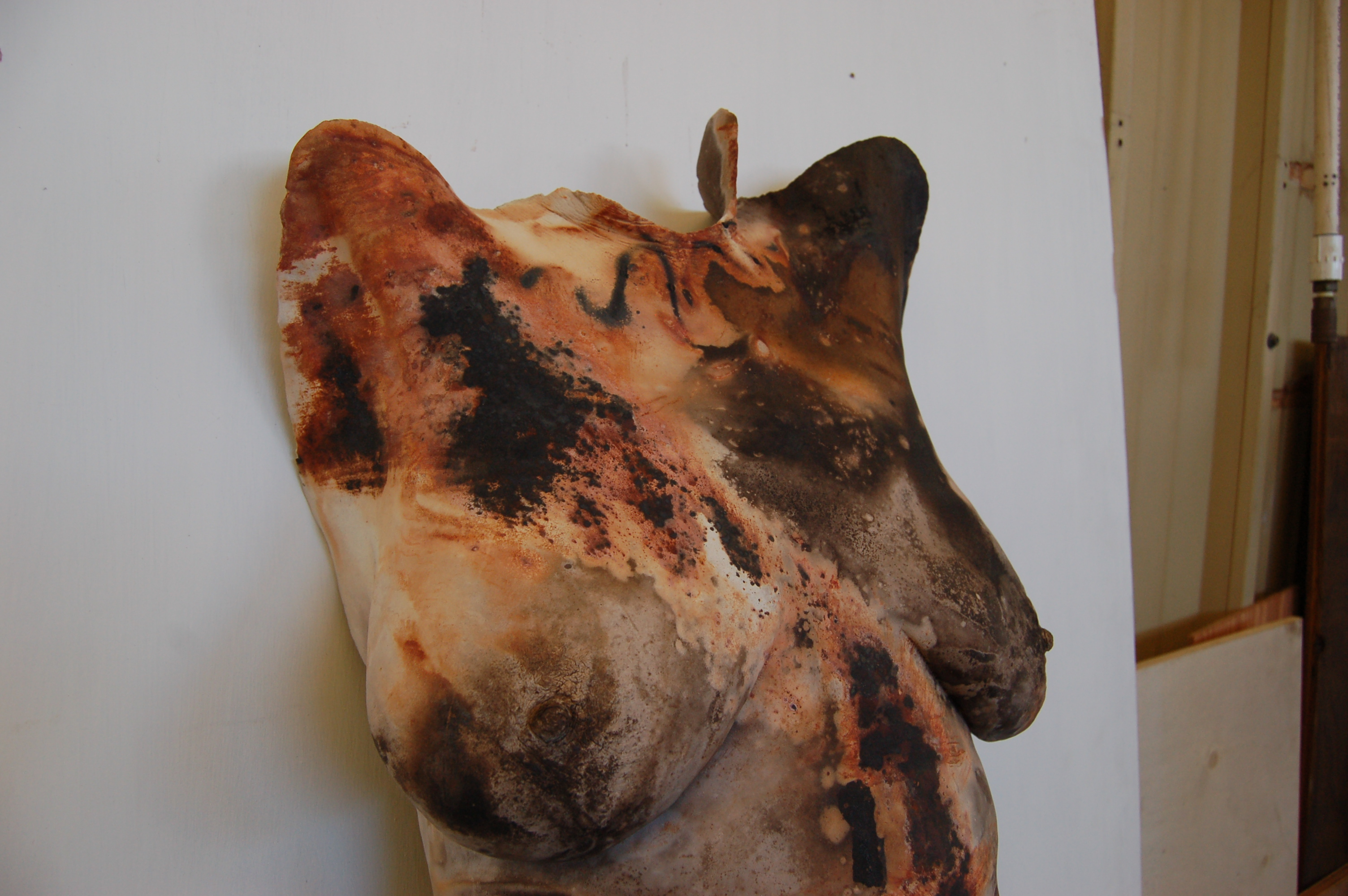 Ceramic Body casting pic1361